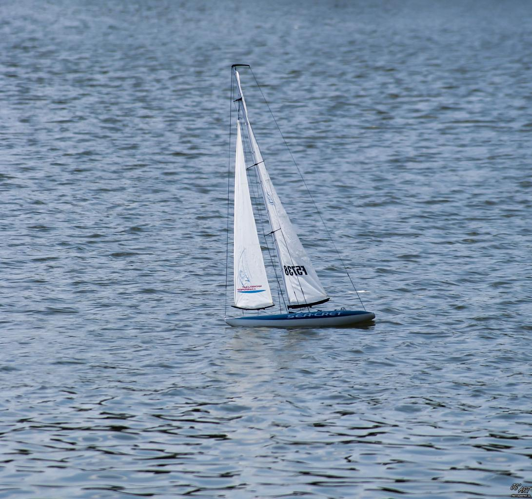 Sea Cret